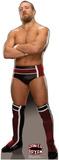 Daniel Bryan - WWE Lifesize Standup Cardboard Cutouts