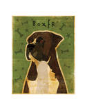 Boxer (Brindle) Giclee Print by John Golden