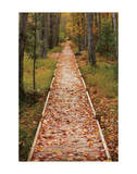 Straight Path Giclee Print by Michael Hudson