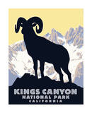 Kings Canyon Giclee Print by Steve Forney