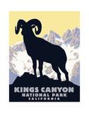 Kings Canyon Reproduction procédé giclée par Steve Forney