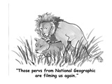 """Those pervs from National Geographic are filming us again."" - Cartoon Giclee Print by Carolita Johnson"