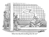 """About time they did something about the rats!"" - New Yorker Cartoon Premium Giclee Print by Liam Walsh"