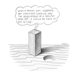 "Square peg looking at round hole thinking ""With a proper diet, moderate bu… - New Yorker Cartoon Regular Giclee Print by Anthony Taber"