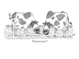 """Dynamite grass!"" - New Yorker Cartoon Premium Giclee Print by Jack Medoff"
