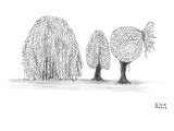 A willow trees branches are pulled into a ponytail. - New Yorker Cartoon Premium Giclee Print by Ihrie Means