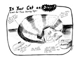 Is Your Cat On Drugs -Look For These Warning Signs - New Yorker Cartoon Premium Giclee Print by Stephanie Skalisky