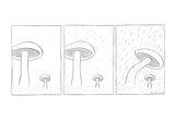 In the grass stands a large and small mushroom growing in grassy plot. Dro… - New Yorker Cartoon Premium Giclee Print by Richard McCallister