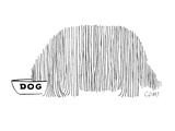 Long haired dog eats food from his own personal dish. - New Yorker Cartoon Premium Giclee Print by Charles E. Martin