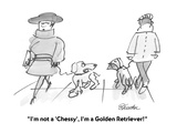 &quot;I&#39;m not a &#39;Chessy&#39;, I&#39;m a Golden Retriever!&quot; - Cartoon Premium Giclee Print by Boris Drucker