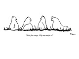 """We're free-range.  Why not run for it"" - New Yorker Cartoon Premium Giclee Print by Michael Shaw"