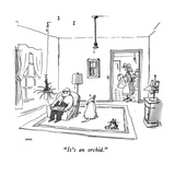 """It's an orchid."" - New Yorker Cartoon Premium Giclee Print by George Booth"