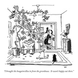 """I brought the bougainvillea in from the greenhouse.  It wasn't happy out …"" - New Yorker Cartoon Premium Giclee Print by George Booth"