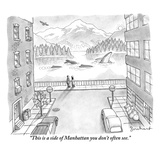 """This is a side of Manhattan you don't often see."" - New Yorker Cartoon Premium Giclee Print by David Borchart"