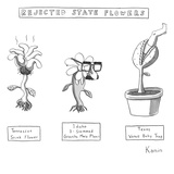 """Rejected State Flowers: Tennessee Stink-Flower; Idaho 3-stemmed Groucho M…"" - New Yorker Cartoon Premium Giclee Print by Zachary Kanin"