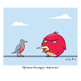 """Of course I'm angry—look at me."" - New Yorker Cartoon Premium Giclee Print by Kim Warp"