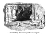"""Poor Zachary.  A meteorite squashed his swing set."" - New Yorker Cartoon Premium Giclee Print by Robert Weber"