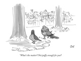 """What's the matter Not puffy enough for you - New Yorker Cartoon Premium Giclee Print by Carolita Johnson"