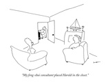 """My feng-shui consultant placed Harold in the closet."" - New Yorker Cartoon Premium Giclee Print by Michael Shaw"