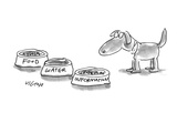 A dog is given three bowls:  'Food,' 'Water,' and 'Information.' - New Yorker Cartoon Premium Giclee Print by Dean Vietor