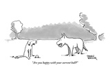 """Are you happy with your current ball"" - New Yorker Cartoon Premium Giclee Print by Shannon Wheeler"