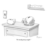 """It's mostly penny weight."" - New Yorker Cartoon Premium Giclee Print by Zachary Kanin"