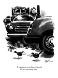 """I was born an urban bird and I'll die an urban bird."" - New Yorker Cartoon Premium Giclee Print by Eldon Dedini"
