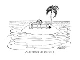 Arbitrageur In Exile - New Yorker Cartoon Premium Giclee Print by Mischa Richter