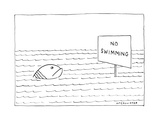 "A large, unhappy-looking fish in a large body of rippling water gazes at a…"" - New Yorker Cartoon Regular Giclee Print by Richard McCallister"