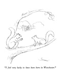 """I feel very lucky to have been born in Westchester."" - New Yorker Cartoon Premium Giclee Print by Charles Sauers"