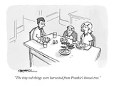 """The tiny red things were harvested from Frankie's bonsai tree."" - New Yorker Cartoon Premium Giclee Print by C. Covert Darbyshire"