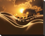 Camel Back Dream Stretched Canvas Print by Richard Desmarais