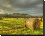 Bales of Hay Stretched Canvas Print by Richard Desmarais