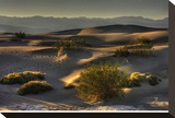 Stovetop Dunes, Death Valley Stretched Canvas Print by Richard Desmarais