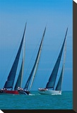 Sailboat Racing Stretched Canvas Print by Vaughn Garner