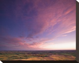 La Palouse Steptoe at Sunset II Stretched Canvas Print by Richard Desmarais