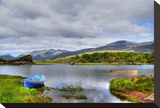Solitude on Killarney Lakes Stretched Canvas Print by Jan Michael Ringlever