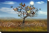 The Butterfly Tree Stretched Canvas Print by Christine Simpson
