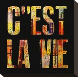 C'est la Vie Stretched Canvas Print by Irena Orlov