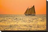 Orange Sky Sailboat Stretched Canvas Print by Vaughn Garner