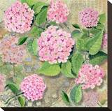 Pink Hydrangea II Stretched Canvas Print by Roberta Collier Morales