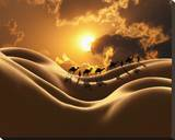 Camel Back Dream Stretched Canvas Print by Richard Desmarais