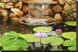 Lilly Pond Stretched Canvas Print by Jan Michael Ringlever