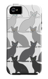 Black Cats iPhone 5 Case by Avalisa