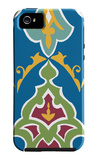 Regal Porcelain IV iPhone 5 Case by Chariklia Zarris