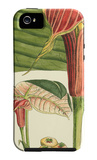 Botanical Fantasy II iPhone 5 Case