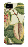 Botanical Fantasy IV iPhone 5 Case