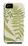Ferns with Platemark III iPhone 5 Case