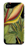 Tropical Plant on Black II iPhone 5 Case