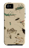 Insects and Toads iPhone 5 Case